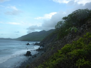 Foot trail along coast.
