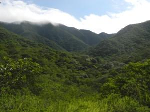 Valle of Santa Elena