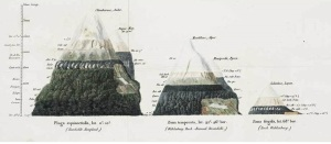 Alexander von Humboldt was among the first naturalist to propose the idea that high latitude and elevational plant communities are structured by abiotic factors whereas tropical and low elevational communities are structured by biotic factors. Foto from von Humboldt (1817).